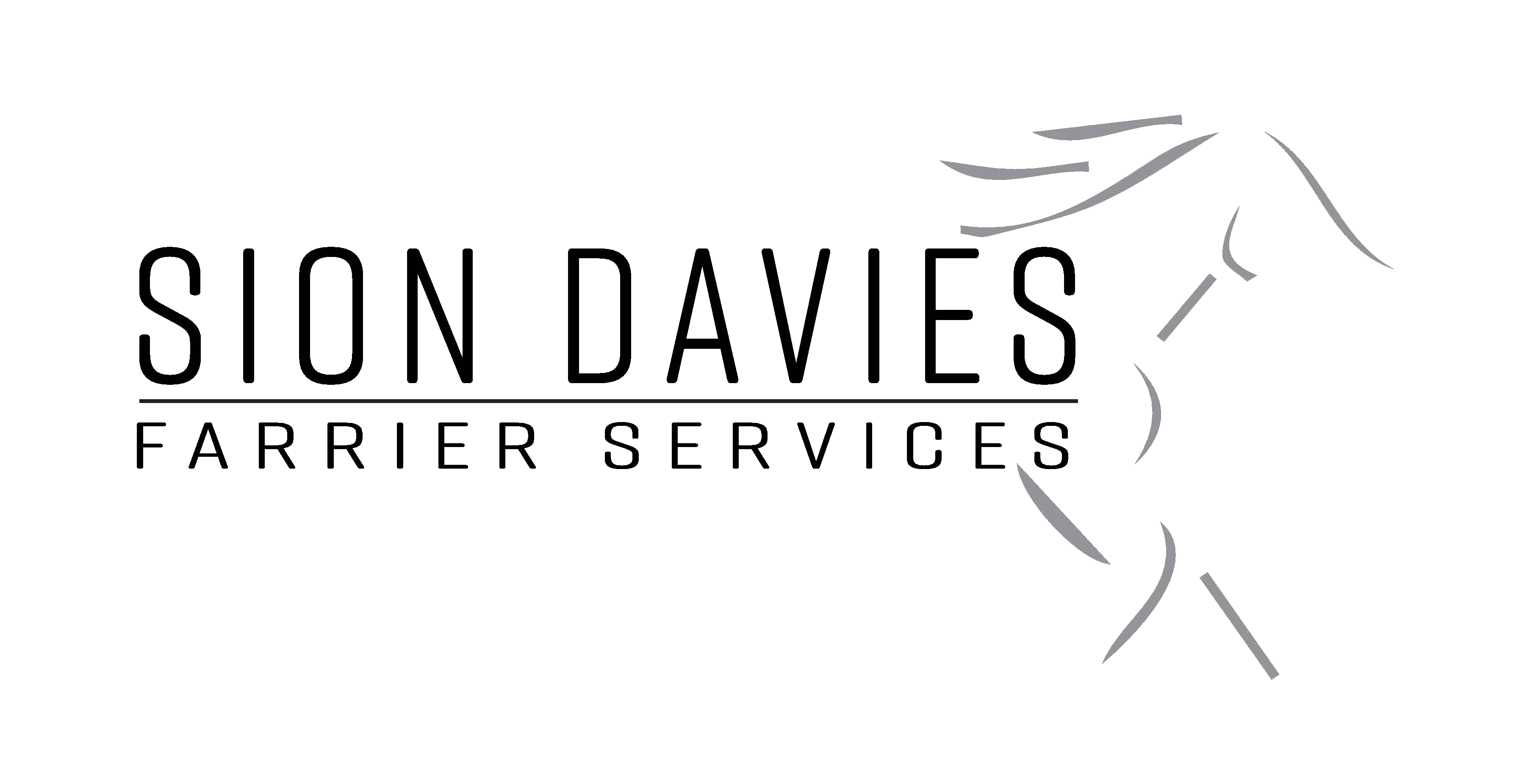 sion davies transparent