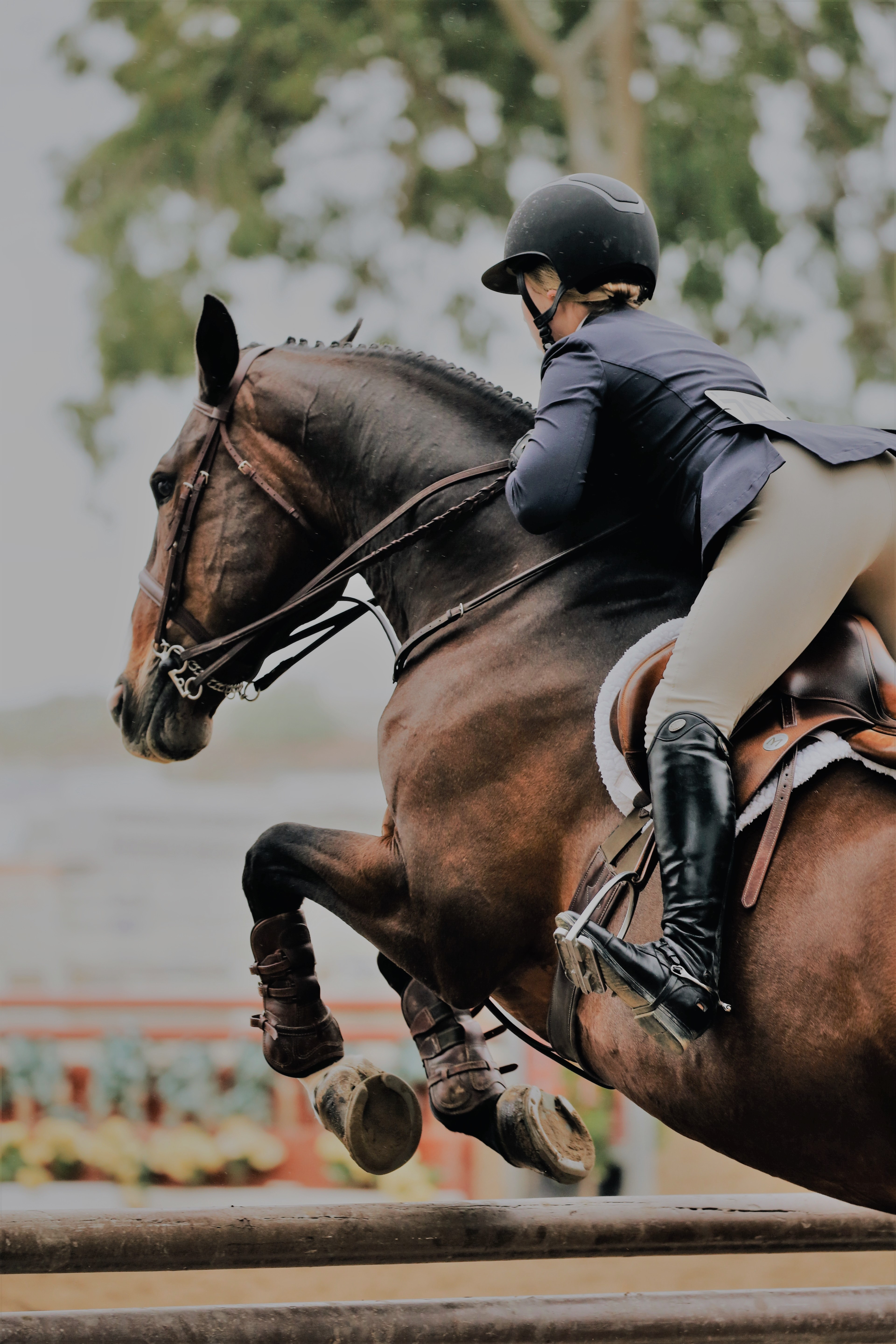 photography-of-person-riding-brown-horse-1125060